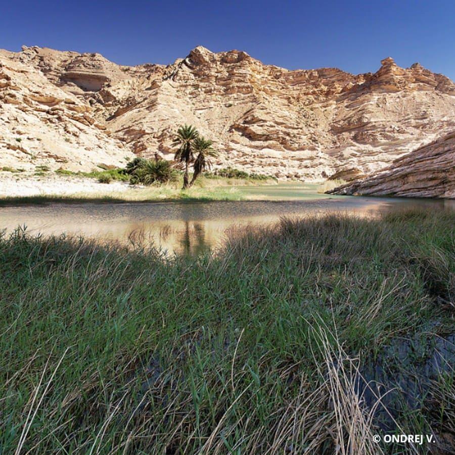 Wadi Snaig Dahnat