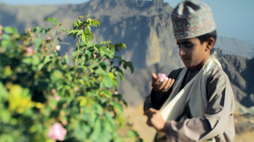 Mountains Boy Plucking a flower in Sayq Plateau Jebel Akhtar Oman